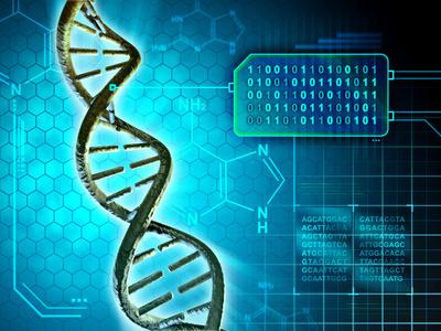 遺伝子構造